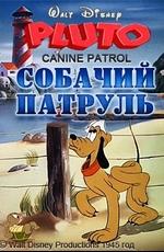 Собачий патруль